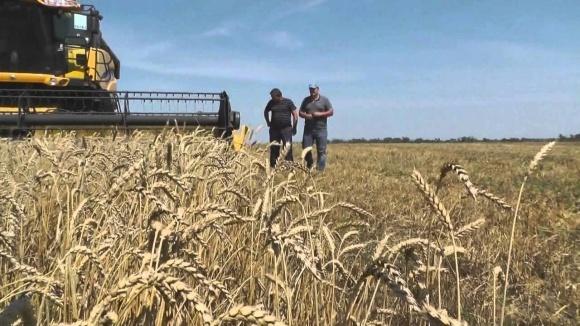 Украинские аграрии завершают уборку ранних зерновых культур фото, иллюстрация
