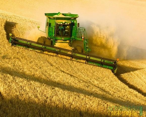 В РФ ожидают снижение урожая-2018 и оказывают поддержку аграриям фото, иллюстрация