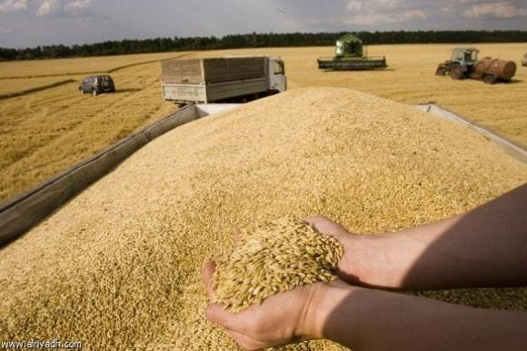 Урожайность наиболее важных сельхозкультур в ЕС в 2017 году фото, иллюстрация