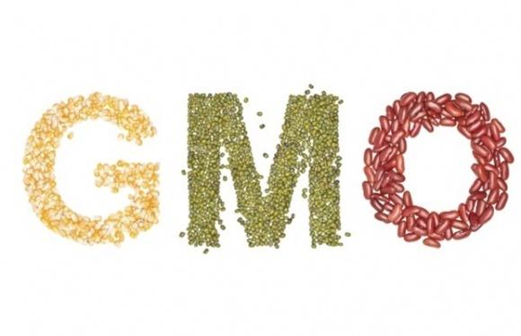 В защиту ГМО и Раундапа. Украинский эксперт против российского ученого фото, иллюстрация
