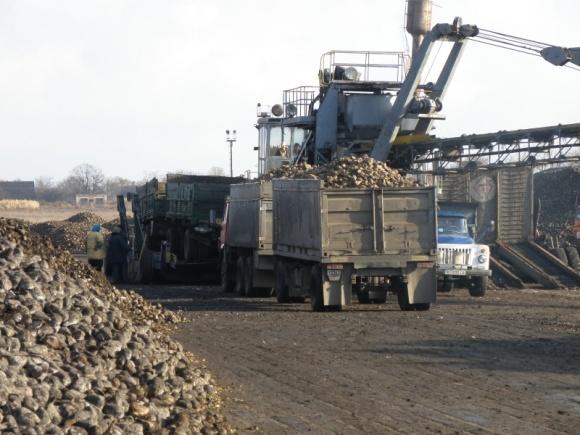 Цены на сахар стабилизировались в ожидании увеличения импорта фото, иллюстрация