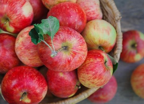 В Україні зафіксований найбільший від початку сезону стрибок цін на яблуко фото, ілюстрація