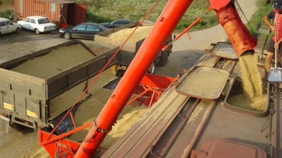 У жовтні 2018 року Укрзалізниця перевезла зернових на 4% більше, ніж роком раніше фото, ілюстрація