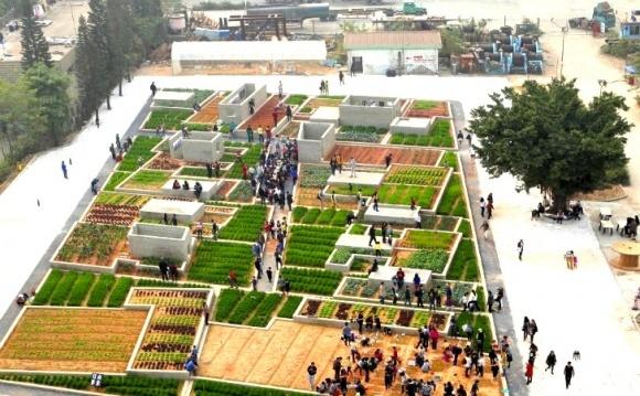 В Китае планируют строить высокотехнологичные сельскохозяйственные зоны фото, иллюстрация
