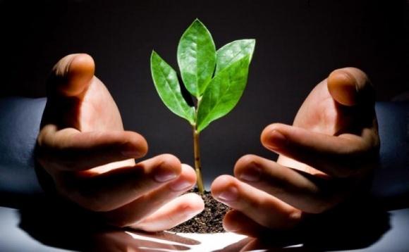 Биоэкономика способна помочь в борьбе с голодом, нищетой и изменением климата  фото, иллюстрация