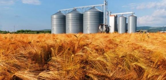 Винницкая область лидирует по объемам производства валовой сельхозпродукции в Украине фото, иллюстрация