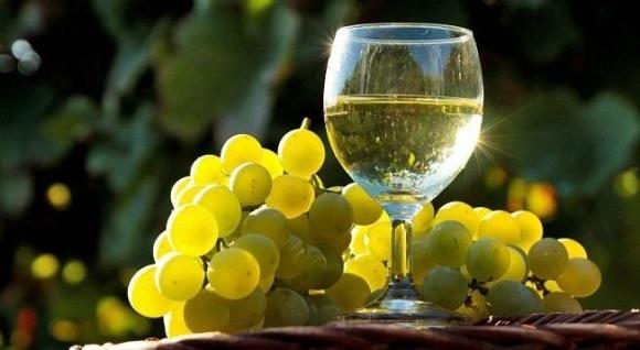 Вино від виноградарів-приватників незабаром з'явиться на ринку, - Baker Tilly фото, ілюстрація