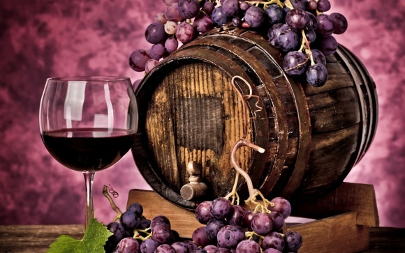 Потенціал Закарпаття - мінімум тисяча виноробів фото, ілюстрація