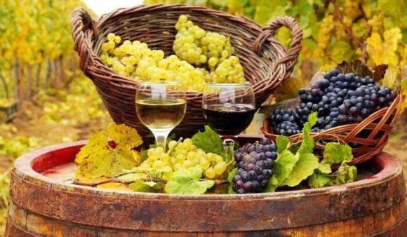 Украине грозит потеря внутреннего рынка винопродукции, — ННЦ фото, иллюстрация