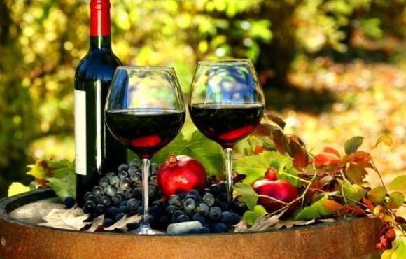 Одеська і Закарпатська області лідирують у виробництві вина та виноградарстві фото, ілюстрація