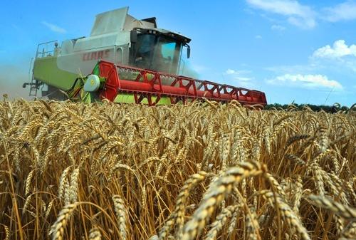 Эксперты обсудили взгляды кандидатов в Президенты на сельское хозяйство фото, иллюстрация