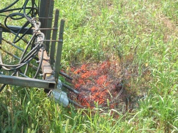 Огневой культиватор: первые результаты фото, иллюстрация