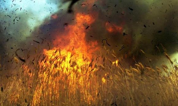 Вогнеборці попереджають аграрїів про можливість пожеж та підпалів фото, ілюстрація