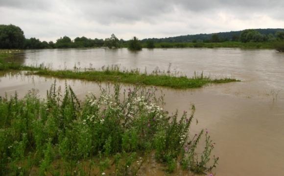 В районе на Волыни паводки уничтожили более 30 процентов посевных площадей фото, иллюстрация
