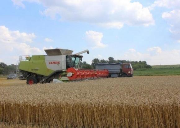 Волинське господарство завершило жнива пшениці за врожайності 7,5 т/га фото, ілюстрація