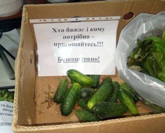 «Кто желает - угощайтесь»: волынские фермеры бесплатно раздают овощи фото, иллюстрация