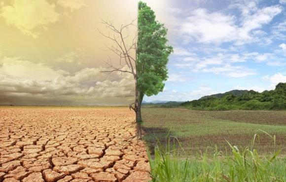 Восточные регионы первыми увидят результаты нарушения агротехнологий фото, иллюстрация