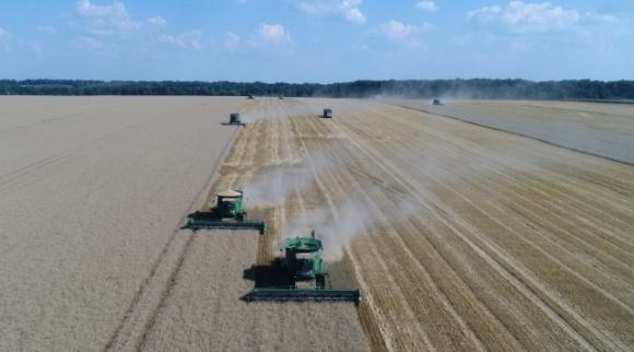 Советник президента подчеркнул, что для будущего урожая есть все предпосылки  фото, иллюстрация