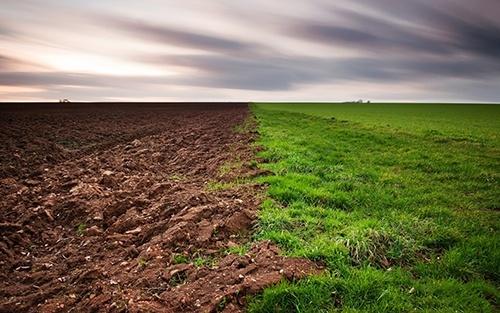 Названо основні проблеми, які гальмують розвиток аграрного сектору фото, ілюстрація