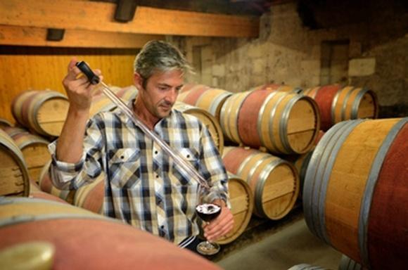 Отмена лицензии на опт винопродукции облегчит экспорт, — НААН фото, иллюстрация