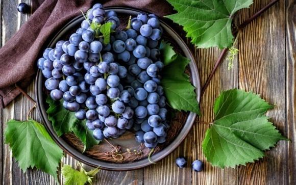 Чи скористаються українські виноградарі перспективами на світовому ринку? фото, ілюстрація