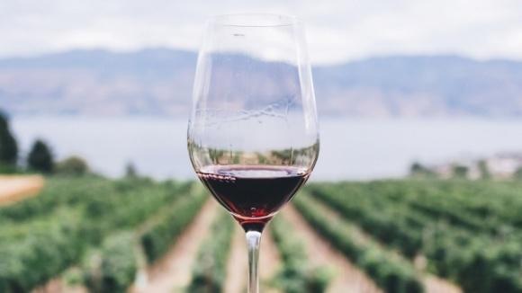 Вино помогает организму защищаться при коронавирусе, — ученые фото, иллюстрация