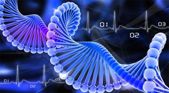 Розшифровано геном жита фото, ілюстрація