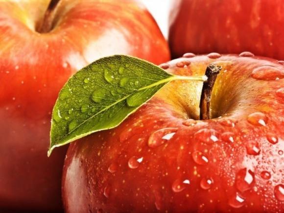 Вінниччина зібрала рекордний урожай яблук фото, ілюстрація