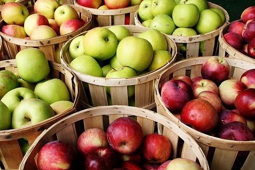 Яблука краще з`їдати з кісточками, - австралійські вчені фото, ілюстрація