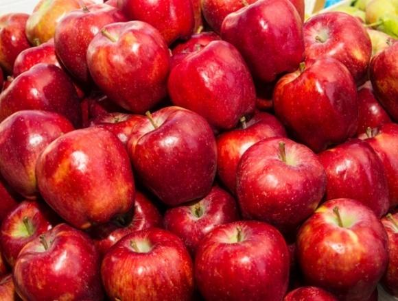 Валовой сбор яблок в Украине будет выше, чем в прошлом году, но не рекордным фото, иллюстрация
