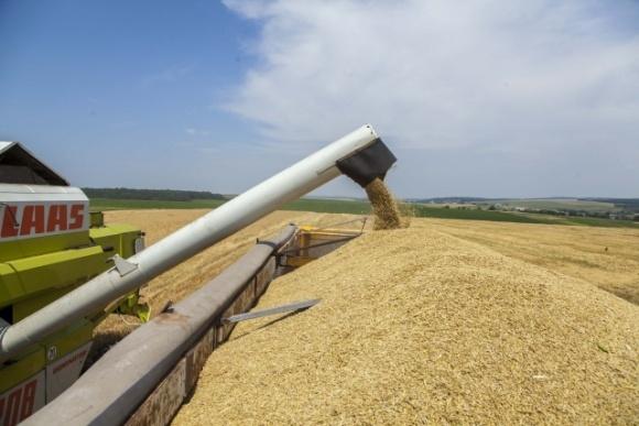 Элеваторы ГК «Прометей» начали приемку нового урожая фото, иллюстрация