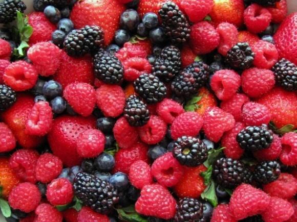 Украина накормит Европу и Китай ягодами фото, иллюстрация