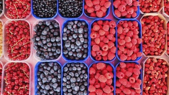 Испания снижает экспорт ягод из-за COVID-19 и нехватки рабочих фото, иллюстрация
