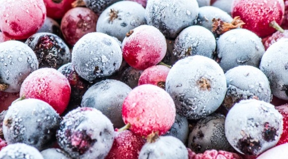 AgroGeneration инвестирует в ягодный кооператив фото, иллюстрация