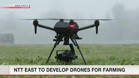 В Японии для сельского хозяйства разработают дроны с искусственным интеллектом фото, иллюстрация