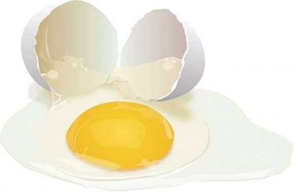 Ученые создали раствор на основе яичного белка, который увеличивает срок годности фруктов на неделю фото, иллюстрация