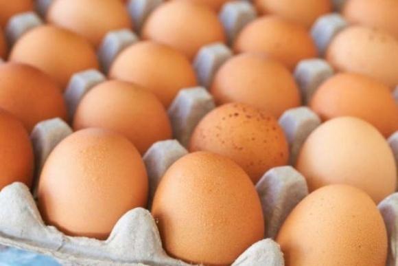 ЗМІ назвали тиск НАБУ на одного з великих виробників однією з причин подорожчання яєць фото, ілюстрація
