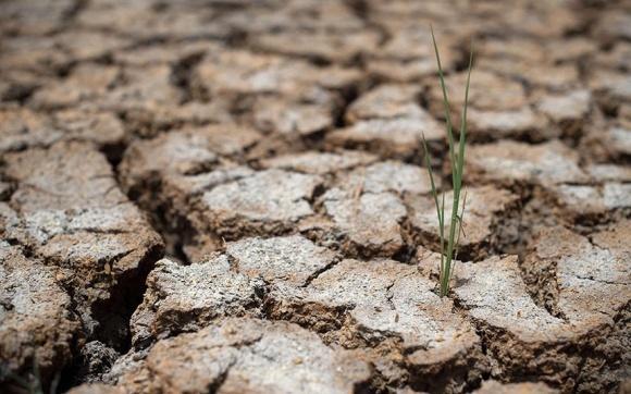 Для розвитку АПК необхідне раціональне землекористування, - вчені фото, ілюстрація