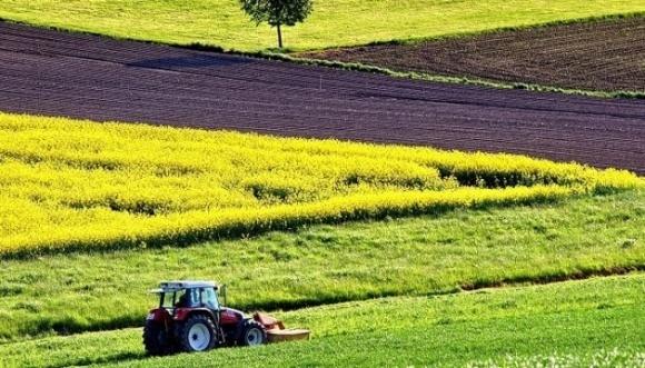 Рынок земли сломает сырьевую модель экономики и простимулирует переработку фото, иллюстрация