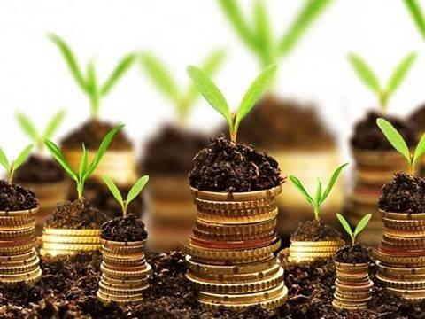 Инвестиции для АПК поможет собрать земля фото, иллюстрация