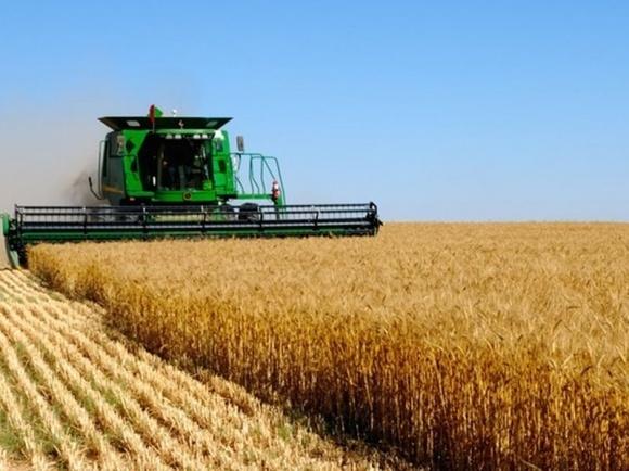Хозяйства НААН демонстрируют рекордную урожайность зерновых фото, иллюстрация