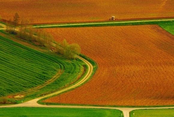 Мінагропрод запустить пілотний проект з моніторингу земельних відносин фото, ілюстрація