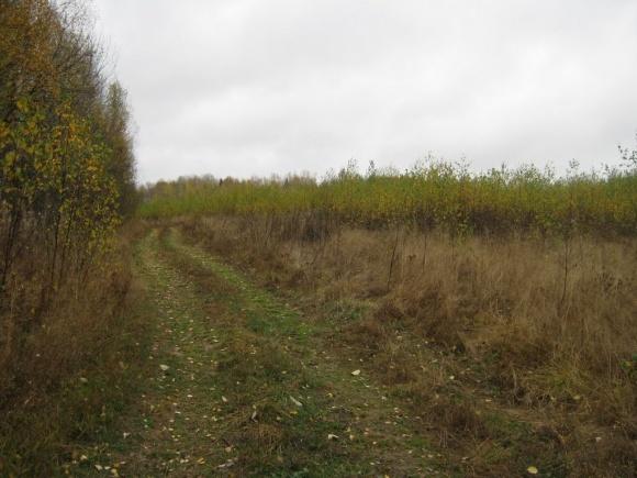 Около 7-8 млн га земель сельхозназначения используется неэффективно фото, иллюстрация