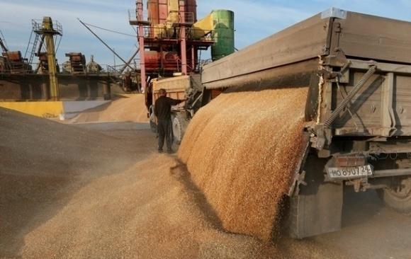 Вагові обмеження для зерновозів не дадуть очікуваного ефекту фото, ілюстрація