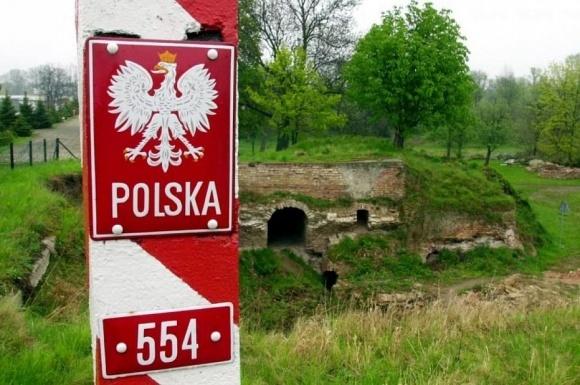 Польша отгородится от чумных кабанов из Украины забором фото, иллюстрация