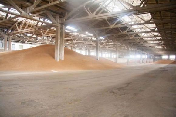 В Україні на третину зменшилися запаси зерна фото, ілюстрація