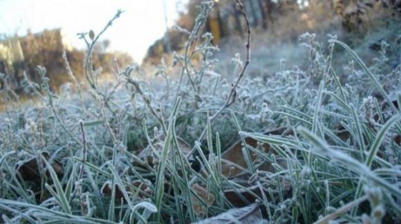 Прогнозовані заморозки ще більш погіршать умови проведення осінньої посівної в Україні, — експерт фото, ілюстрація