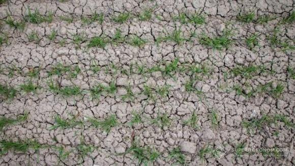 Чем грозит Херсонщине засуха-2018  фото, иллюстрация