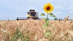 8 міфів про українське сільське господарство фото, ілюстрація