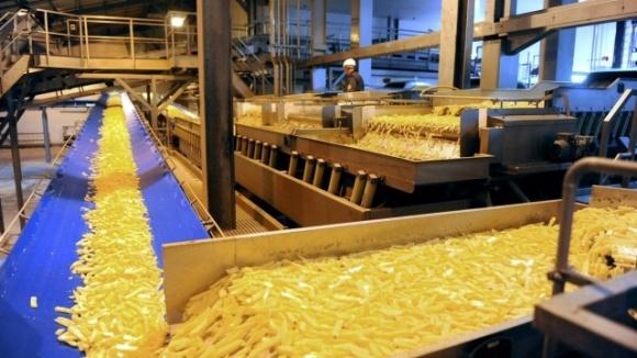 Potato Agro запустить в Україні завод із виробництва картоплі фрі фото, ілюстрація